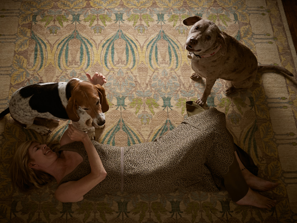 Dogs and a Dress